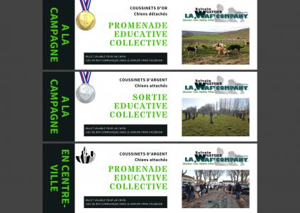 Evénements collectifs | LA 'WAF' COMPANY