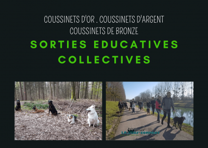 SORTIES EDUCATIVES COLLECTIVES